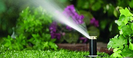 Lawn Irrigation 3