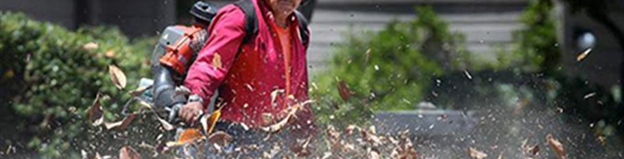 Leaf Blower - Web
