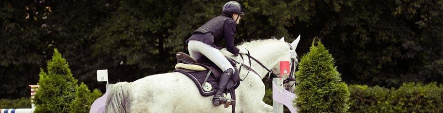 Equestrian-Center-Header
