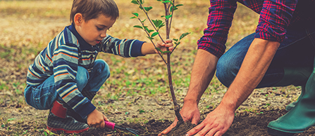 Photo of father and son planting a tree