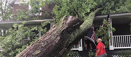 Storm Damage News Item